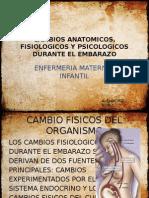 Cambios Anatomicos, Fisiologicos y Psicologicos Durante El