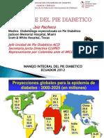 enfoque-del-pie-diabetico.pdf