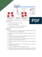 Prueba de Antiglobulina Directa