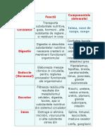 Componentele Sistemului
