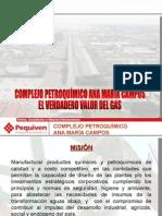 Presentaci¢n del Complejo Petroquimico Ana  Mar¡a Campos.ppt