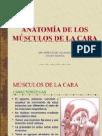 ANATOMIA DE LA CARA.ppt
