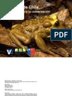 Conservación de Anfibios Final DIC 2013