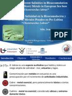 """Influencia de la Salinidad en la Bioacumulación y Toxicidad de Metales Pesados en Pez Lubina """"Dicentrarchus labrax"""""""