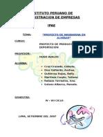 proyecto_mandarina_final.doc