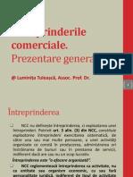 Ntreprinderile Comerciale - Prezentare General