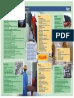 Mitigating slip trip fall.pdf