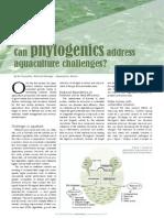 Can phytogenics address aquaculture challenges?