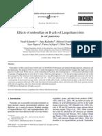 Effects of Endosulfan on B Cells of Langerhans Islets in Rat Pancreas