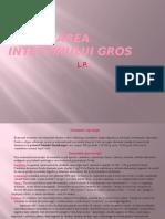 Explorarea Intestinului Gros Power Point