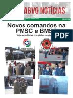 ABVO Noticias Nr 024 Mes 01 2015