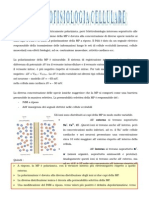 Elettrofisiocc (Completo)