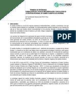 TDR Plan Implementacion de La ERCC