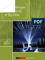 Challenges and Rewards of Big Data