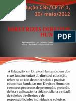 Diretrizes Direitos Humanos