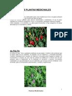 AJÍ plantas medicinalessssssss.docx