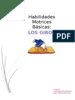 HABILIDADES GIROS