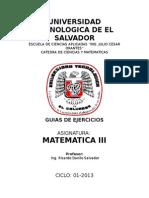 Guias Mate III 01 2013