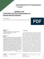 Cerebro Humano interpretacion