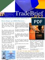 eBSI Trade Brief Issue 2
