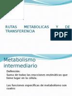 Rutas Metabolicas y de Transferencia