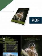 Aves Rapaces de La Cordillera de Nahuelbuta y Sus Alrededores