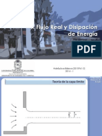 02 Flujo Real y Discip Energia_2