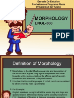 Morphology Presentation For Elementary Students