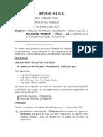 PRUEBAS METALÚRGICAS-ANÁLISIS MALLAS VALORADAS O GRANULOMÉTRICAS (3).docx