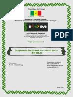 Diagnostic Du Climat de Travail de La SN HLM