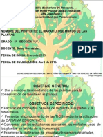 59292381 Proyecto de Aprendizaje 2º y 5º Grado El Maravilloso Mundo de Las Plantas [Autoguardado]