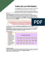 Niveles de Estructura de Proteinas...