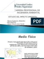 Carrera Profesional de Ingienieria Ambiental[1]