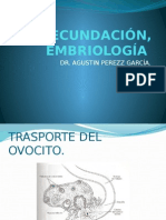 fecundacion embiologia