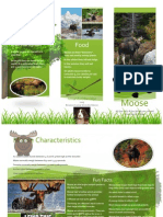 etheridge brochure moose