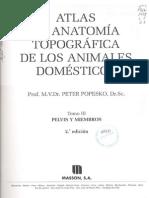 Atlas de Anatomia Topografica de Los Animales Domesticos (Peter Popesko) Tomo III
