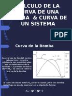 Cálculo de La Curva de Una Bomba &