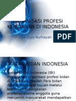 Organisasi Profesi Kebidanan Di Indonasi