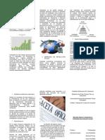 Análisis Del Mercado Exterior Venezolano ju y EPS (Triptico)