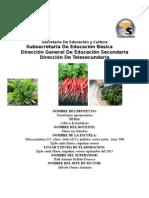 220358644 Cultivo de Hortalizas