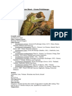 Care Sheet - Green Pricklenape