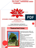 Tamarind Kernel Powder by Mysore Starch Manufacturing Company