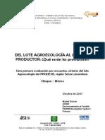 informe sintesis encuestas oct 07.pdf