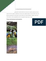 Animais Da Amazônia