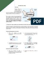 1. Practica Textura Del Suelo