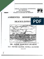 Ambientes Sedimentarios Siliclasticos