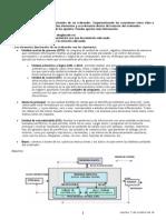 242277281-Tarea-1-Fundamentos-del-Hardware-docx.pdf