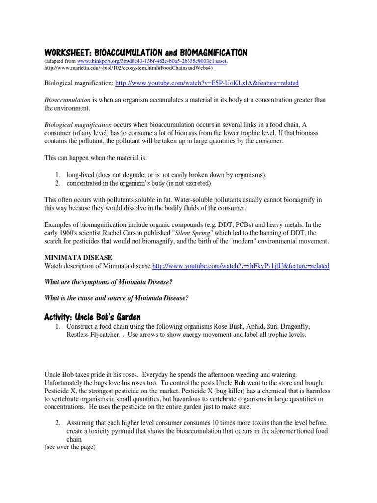 {bioaccumulationbiomagnification worksheet Chemistry – Biomagnification Worksheet