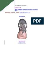 Dakshinamurti Slokam in Sanskrit, Transliteration, Translation