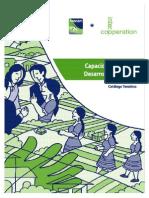 Capacidades Para El Desarrollo Territorial Catálogo Temático